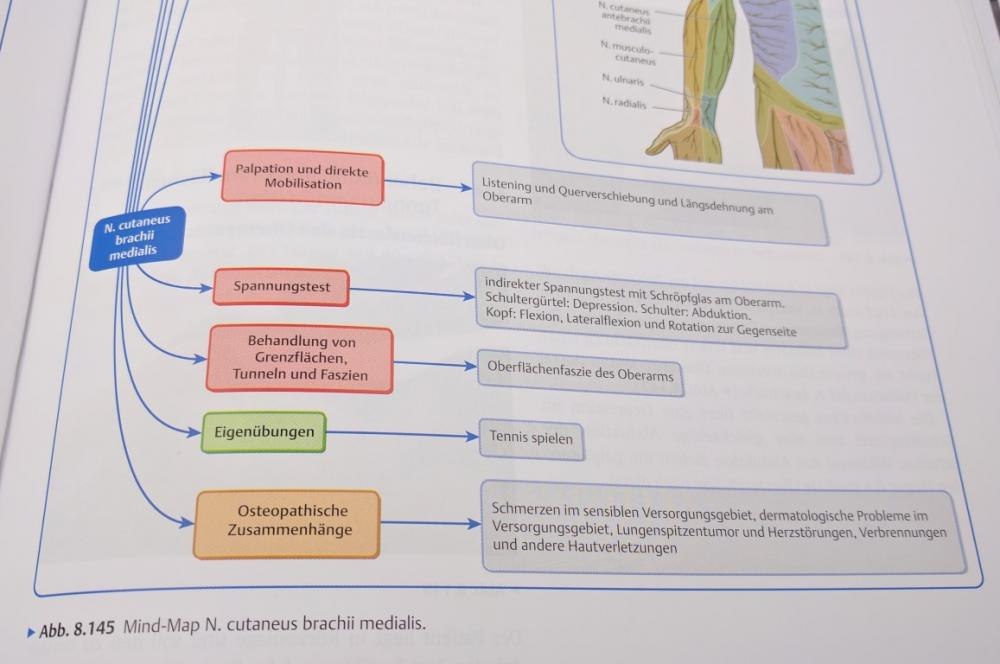 201701-mind-map-n-cutaneus-brachii.jpg