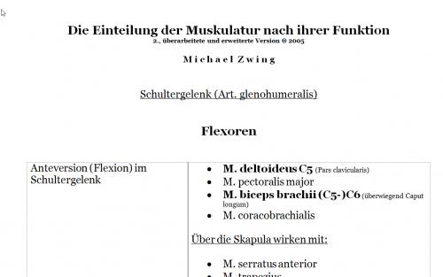 Screenshot for Die Einteilung der Muskulatur nach ihrer Funktion - Version 2005 -