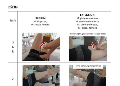 Screenshot for Muskelfunktionstest nach Janda