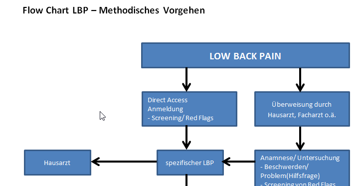 2017-04-07 17_29_20-Flow Chart LBP Methodik deutsch.docx (Geschützte Ansicht) - Microsoft Word.png