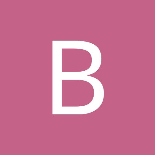 bvstein