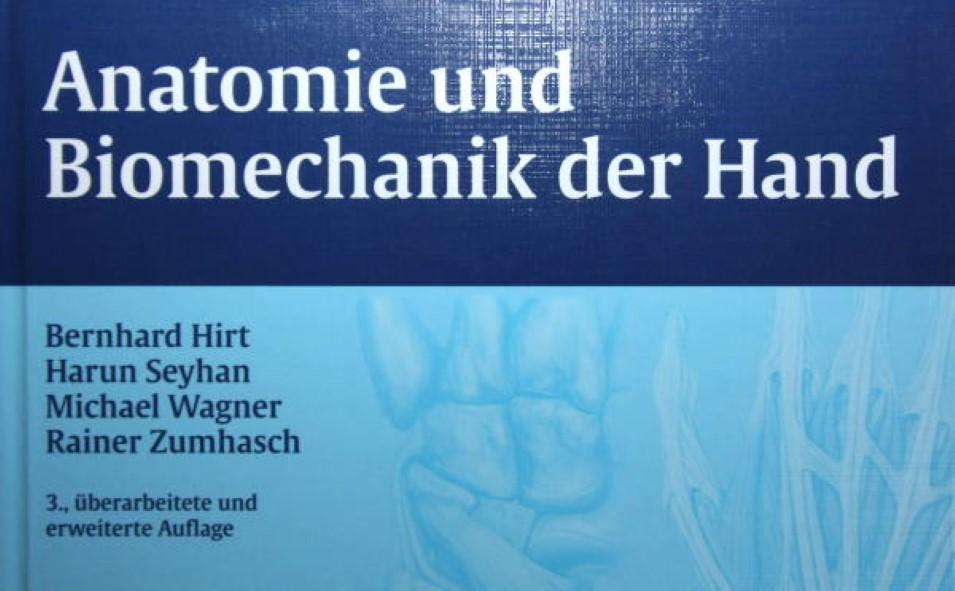 Anatomie und Biomechanik der Hand - Bücher - Physiowissen.de ...